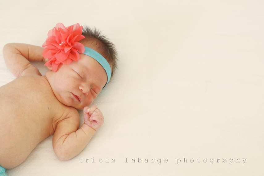 Menlo-parknewborn-photographer-1